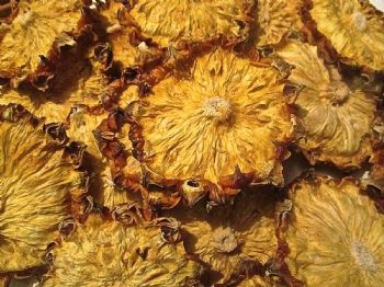 100gram  Dried Pineapple Slices  Wreaths Botanical CRAFTS.